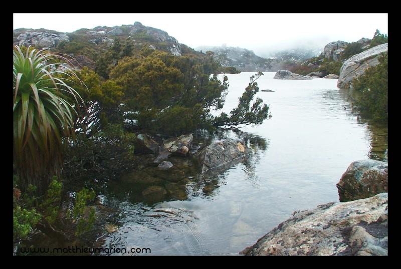 hk-tasmania